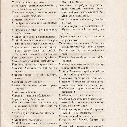 Starosvitsjkyj Bandurysta (219).jpg